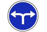 R-403c. Únicas direcciones y sentidos permitidos