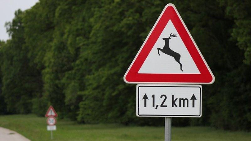 las señales de peligro de trafico