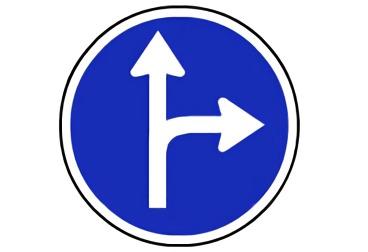 señal R-403a Únicas direcciones y sentidos permitidos