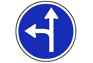 señal R-403b Únicas direcciones y sentidos permitidos