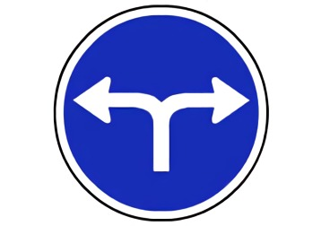 señal R-403c Únicas direcciones y sentidos permitidos